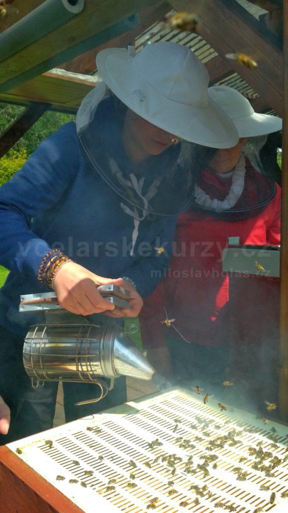 Včelařské kurzy - včelařka